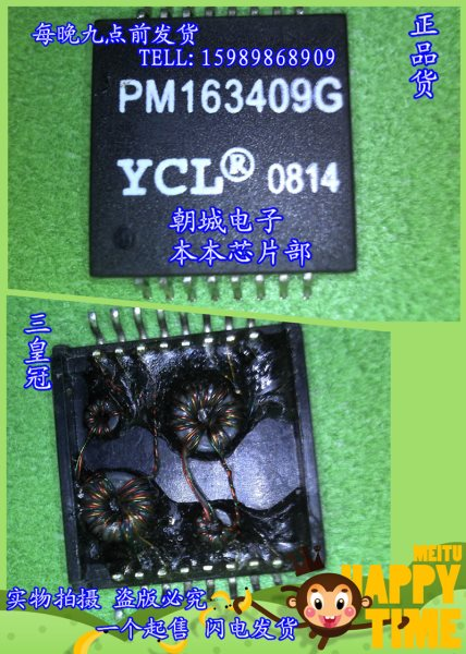 Chip PM163409G net bridge